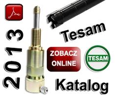 Katalog 2013 Tesam